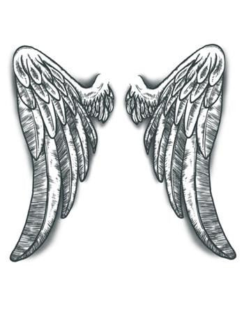 Tattooed Now! Angel Wings