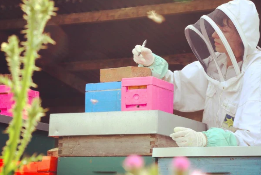 Meet the London Honey Company team: Hannah Reeves