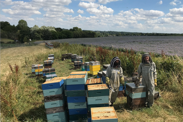 MEET THE LONDON HONEY COMPANY TEAM: GEORGE CHELTON