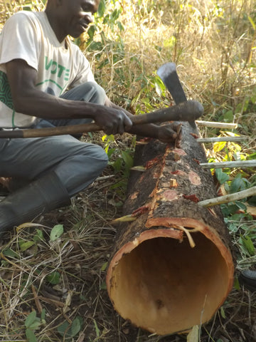 Bark beehives being built in North West Zambia, photo courtesy of Janet Lowore