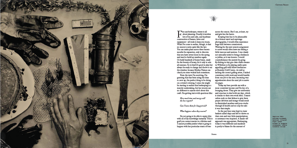 An extract from Steve Benbow's new book with Alys Fowler, Letters to a Beekeeper