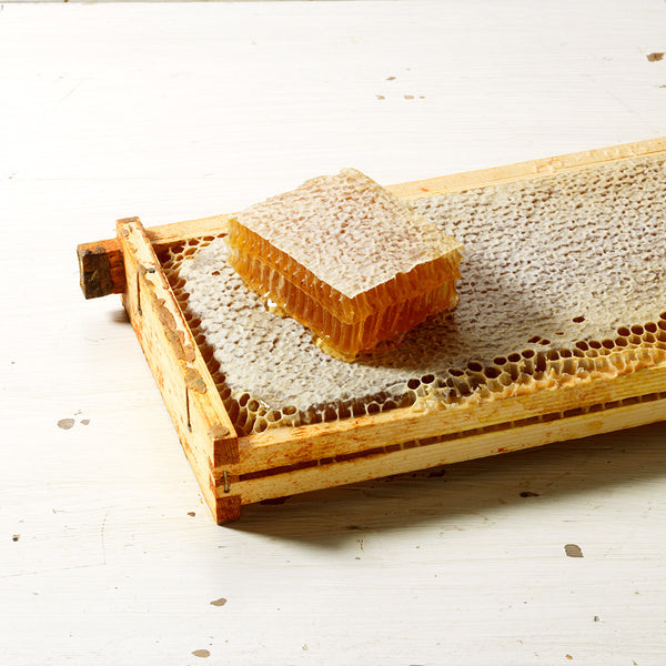 Raw Honey, London Honeycomb Frame