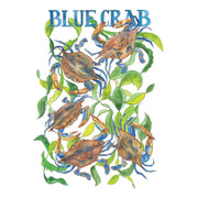 Blue Crab Art Print by Marcella Kriebel