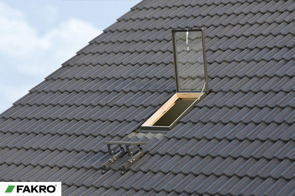 Wgi Fakro Top Hung Access Roof Light 46x55 Roof Windows