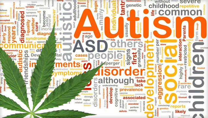 I Give My Son, Who Is 7, CBD Oil To Treat His Autism