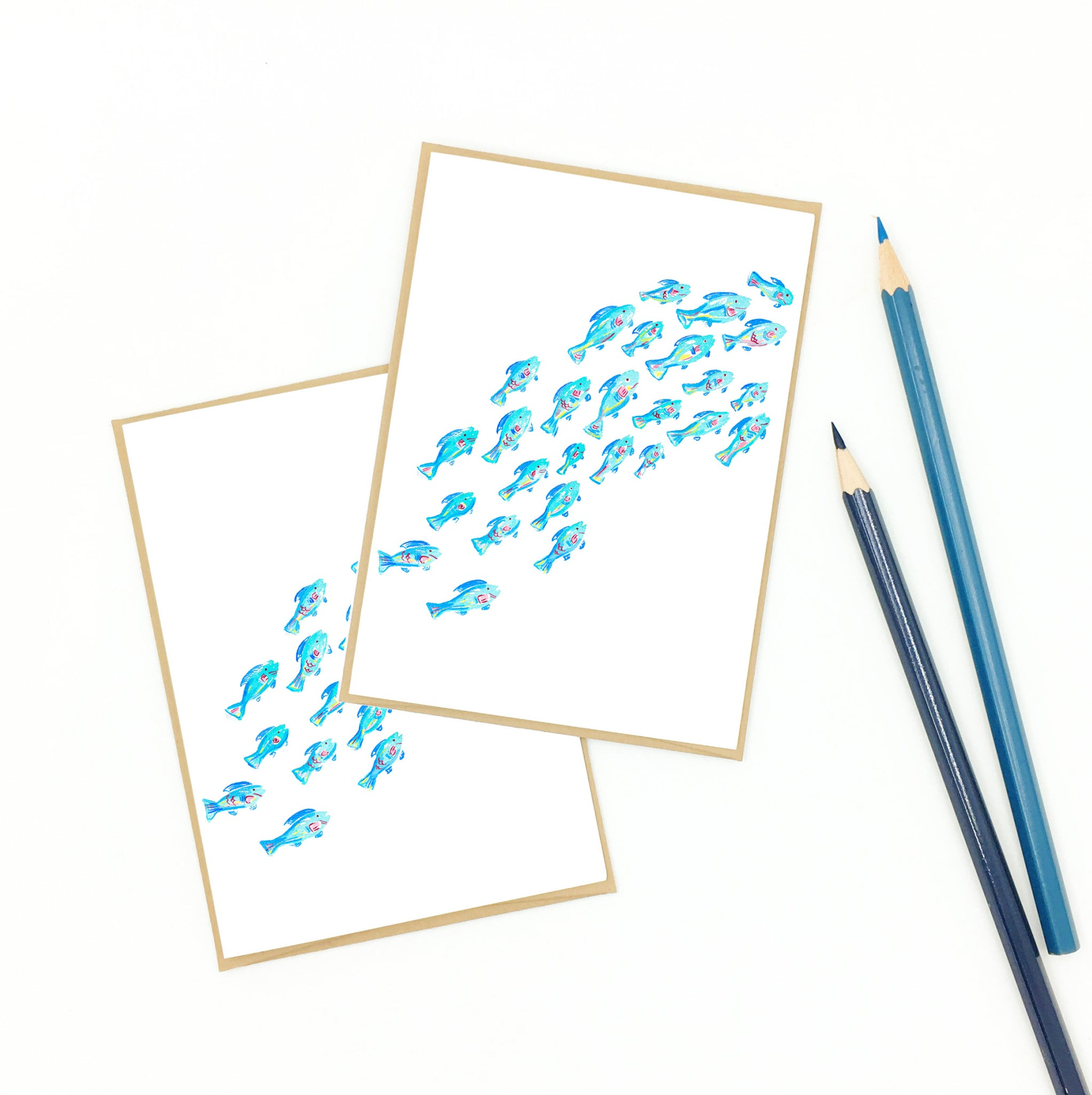 Coral reef gifts, school of parrotfish, boxed notecard set.