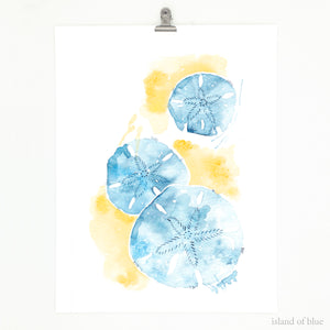 Sand dollar art, navy and indigo blue watercolor sand dollars.