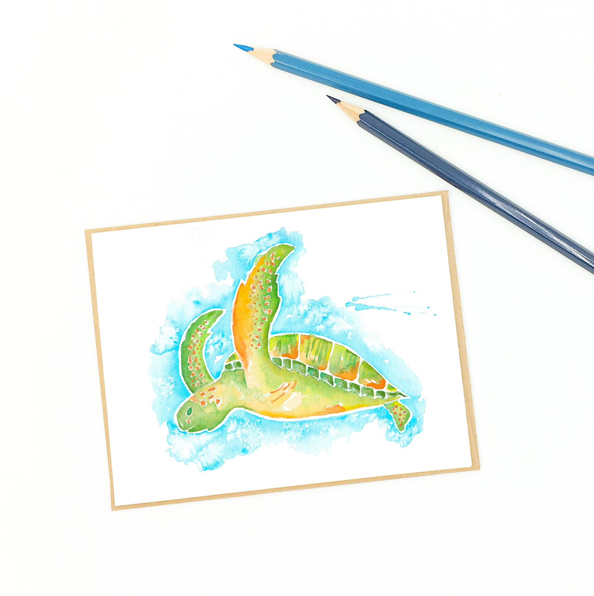 Sea turtle fine art cards, Kemp's Ridley