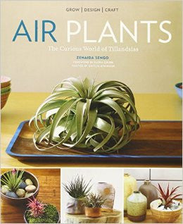 Air Plants by Zenaida Sengo