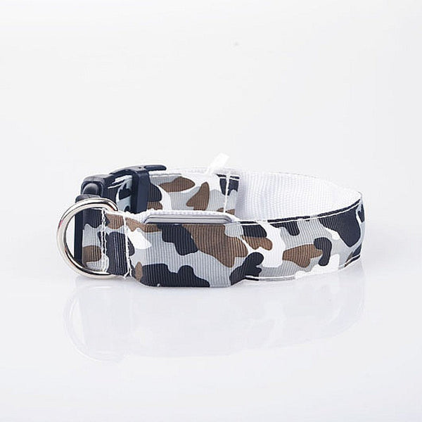 FREE Glow-in-the-dark Camouflage Style Chihuahua Collar