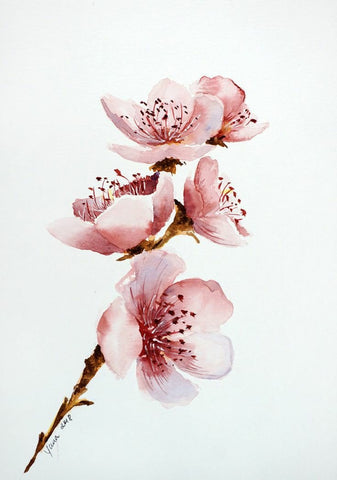 Almond Blossoms #1