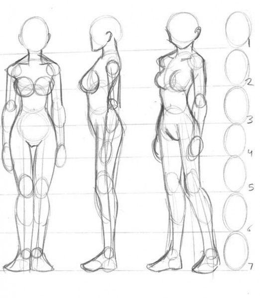 Drawing the Body