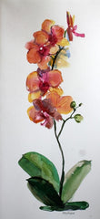 Watercolor Orchid - Live-Stream