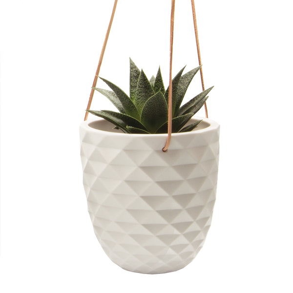 Thimble Hanging Planter