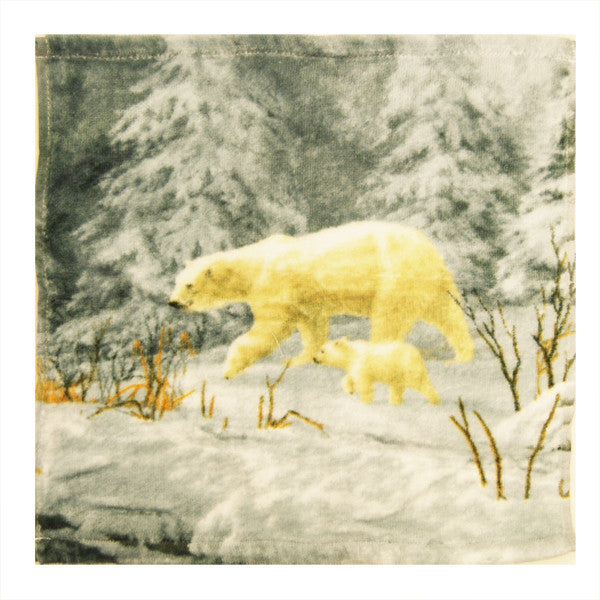 Arctic Arrival Washcloth Towel