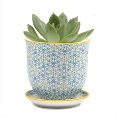 Small Liberte 3 Pot & Saucer - Chive Wholesale