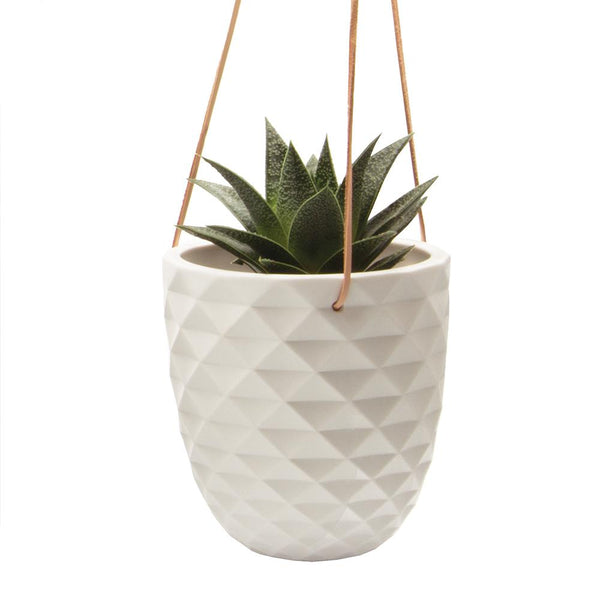 Thimble Hanging Planter - Chive Wholesale