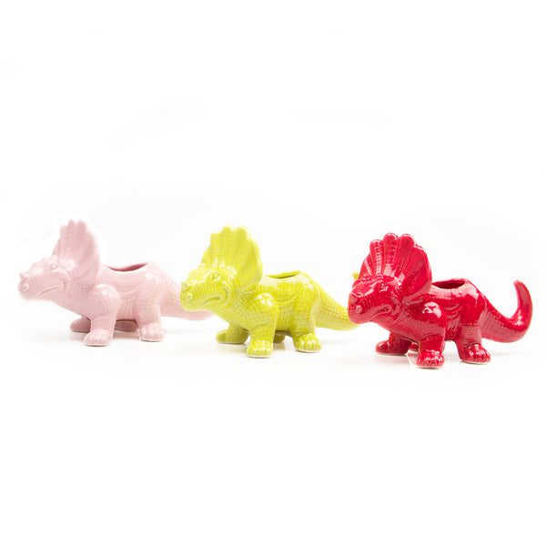 Dinosaurs Kit - Limited Edition!! - Chive Wholesale