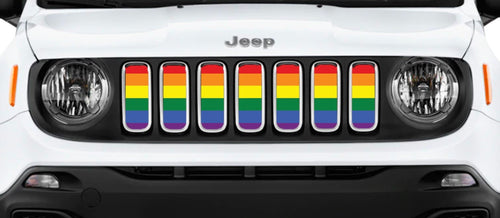 """Pride Flag"" Grille Insert by Dirty Acres"