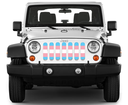 """Trans Pride Flag"" Grille Insert by Dirty Acres"