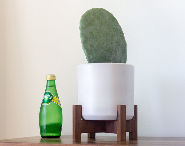 Modern Planter with Plant Stand - Tabletop Cylinder - Object Modern