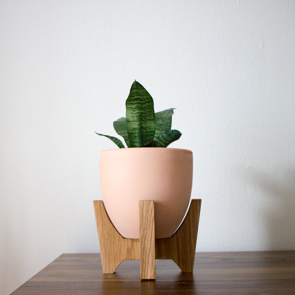 Mid Century Modern Los Angeles Apartment:  Modern Planter With Plant Stand