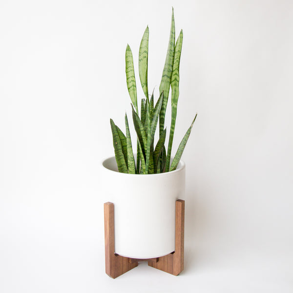 Modern Floor Planter with Ceramic - Object Modern