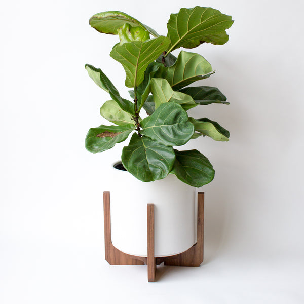 Modern Floor Planter with Ceramic