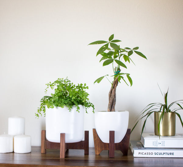 Modern Planter with Plant Stand - Tabletop Bell