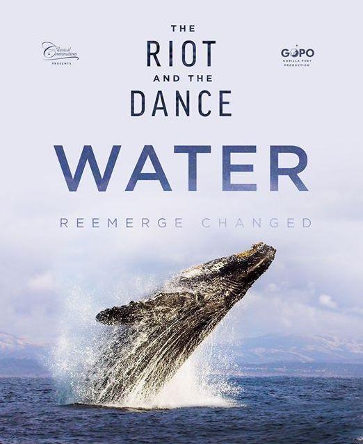 The Riot and The Dance DVD - WHILE SUPPLIES LAST