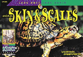 Animal Skin and Scales