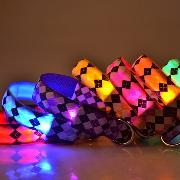 Nylon LED Dog Collar - themdeals - 7