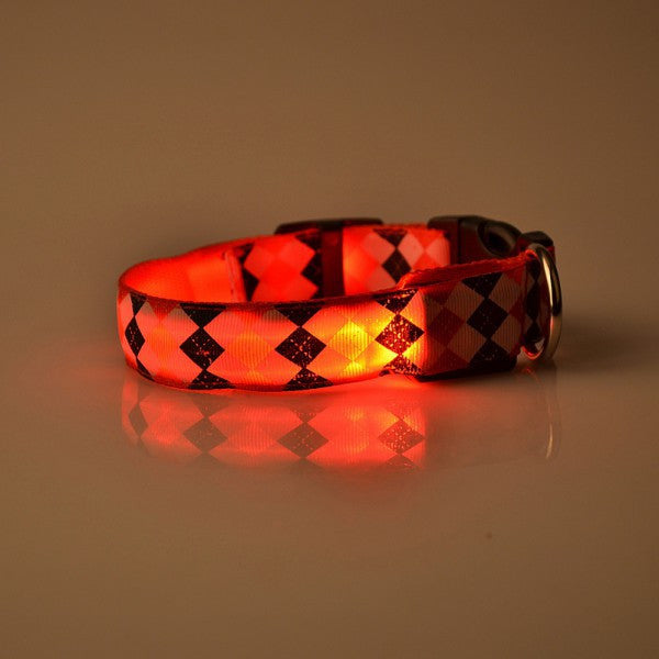 Nylon LED Dog Collar - themdeals - 3