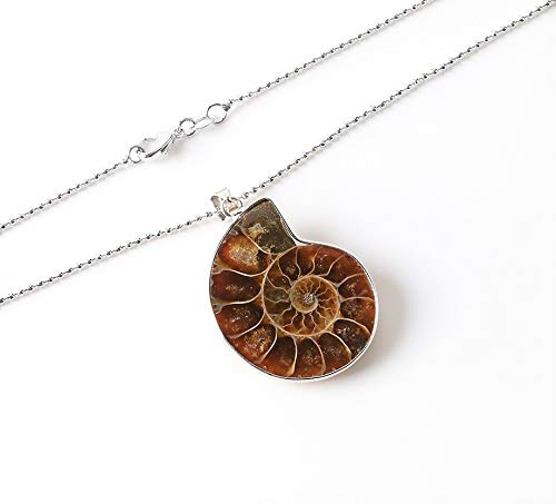 Ammonite Stone Fossil Pendant Necklace and Sage Jewelry Set, Smudge Kit, Worldly Finds, Worldly Finds