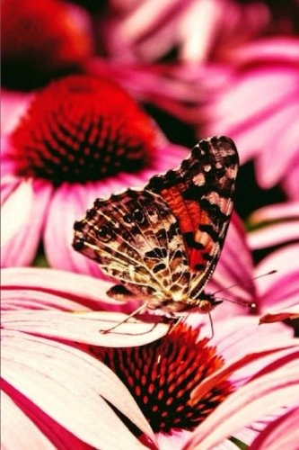 Garden Journal: Butterfly and Flower Nature Journal, Journal, Daily World Finds, Daily World Finds