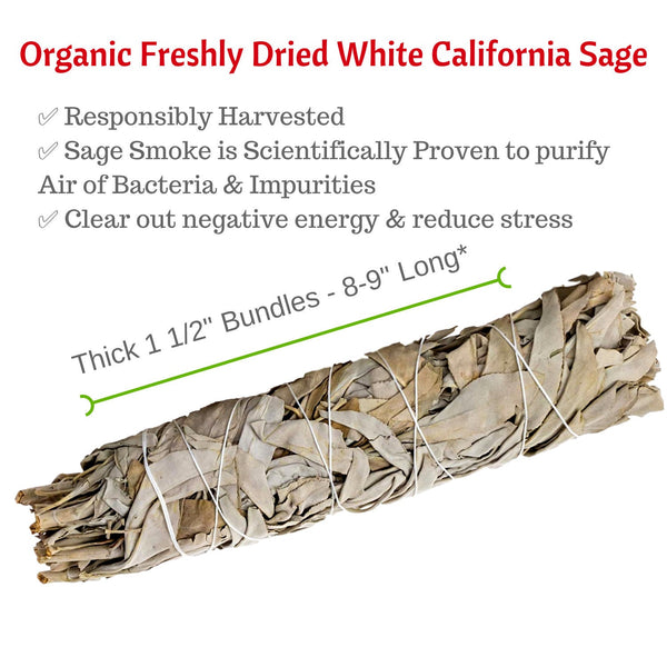Extra Large 8 - 9 Inch White Sage Stick, Sage Smudge Bundle Wand, XL Organic, Freshly Dried, Thickly Wrapped Smudging Stick for Cleansing