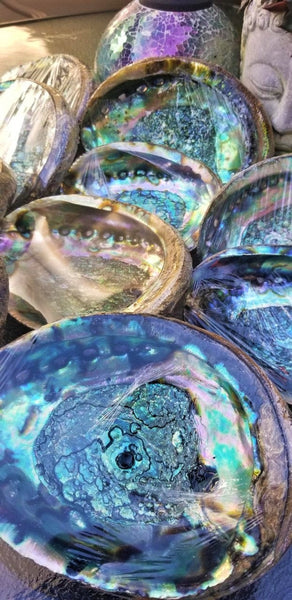 "IMPERFECT Vibrant 6""-7"" Large Abalone Shells, , Discounted! XL Abalone Shell Sage Burning Smudge Bowl Dish, Crystal Holder, Smudging Bowl"