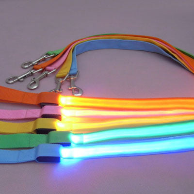 LED Flashing Light Up Nylon Pet Leash / Lead