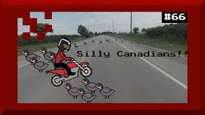 Silly Canadians! Stop crossing the Road