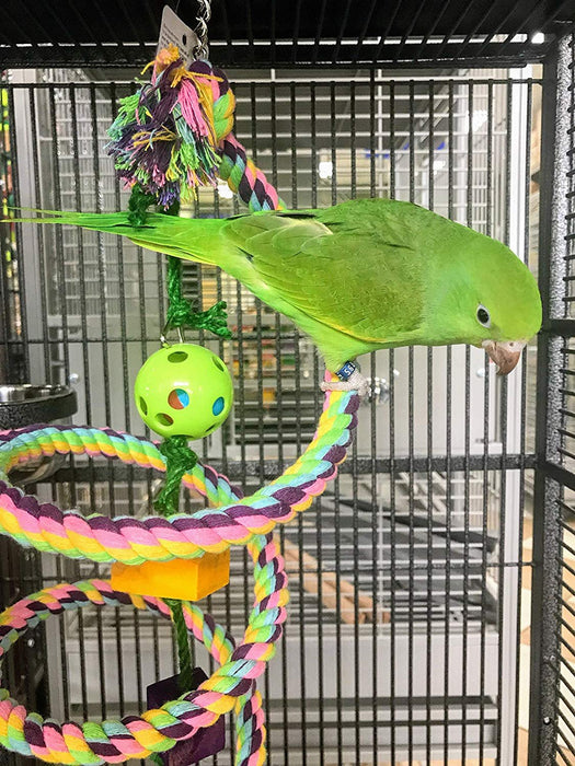 "Birds LOVE Cotton Boing n' Toy with Wood Chews and Toy Rattle Ball for Small Parrots, Lovebirds, Budgies, Parakeets - Rope Size Small: 0.62"" Diameter"