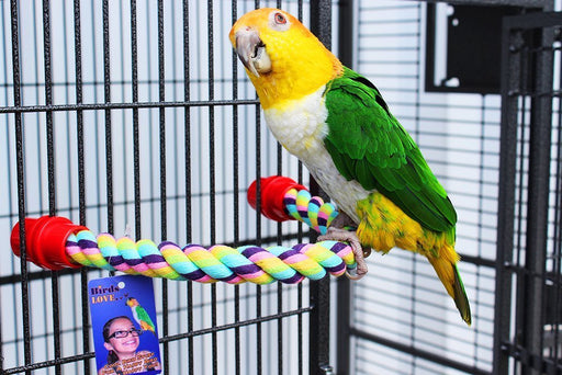 "Birds LOVE Cotton Rope Comfy Cable Perches for Birds 38.5"" Length – For African Greys, Amazons, Eclectus, Macaws, and Similar Sized Birds – 2 pack"