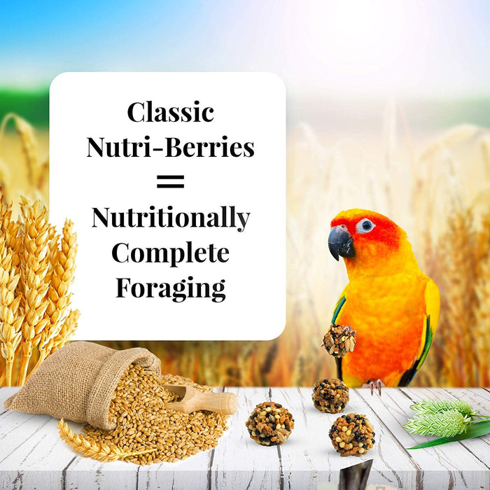 LAFEBER'S Classic Nutri-Berries Bird Food and Treat for Conures 10 oz
