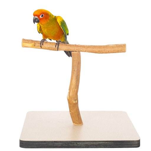 "Birds LOVE Small Dragonwood Bird T-Stand Cockatiels, Lovebirds, Parakeets, Conures 11.75"" x 11.75"" x 9.25"""