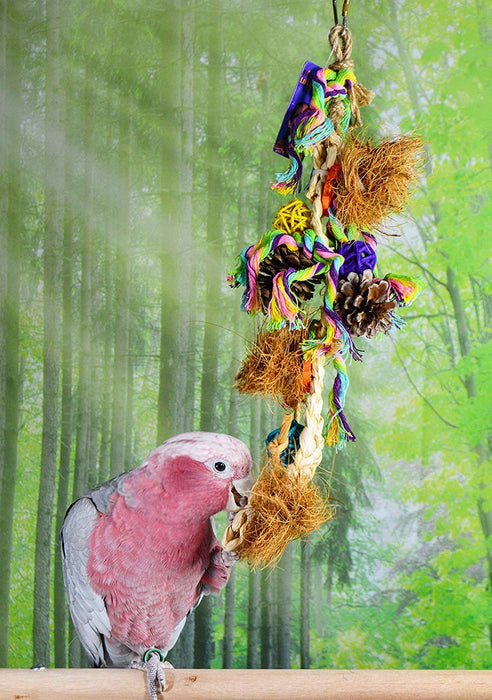 Birds LOVE Natural Hanging Chewing Parrot Stand Toy of Woven Straw w Small Wicker Ball, Pinecones, and More for Extra Bird Cage Fun for Cockatiels Conures Caiques Cockatoo Grey