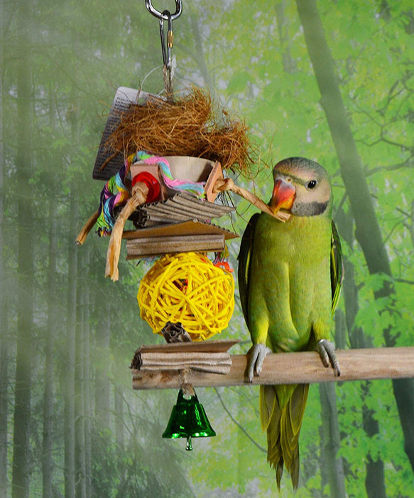 Birds LOVE Natural Hanging Chewing Parrot Stand Toy w Medium Wicker Ball, Cardboard, Leather and Bell for Extra Bird Cage Fun for Cockatiels Conures Caiques Cockatoo Grey