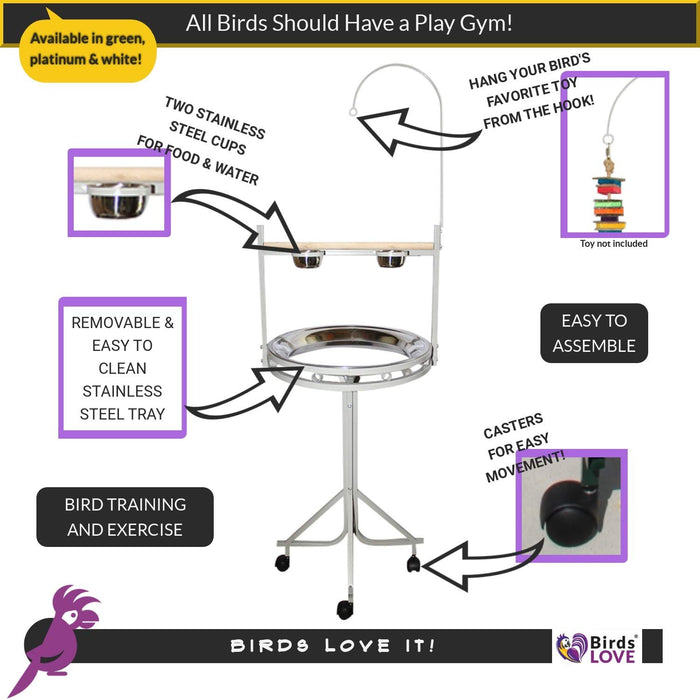 Birds LOVE Non-Toxic, Powder Coated Parrot Playstand with Perch, Toy Hook and... - Black