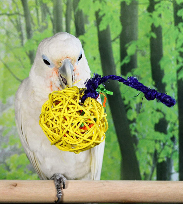Birds LOVE 10 Medium 2-1/2 in w Confetti Foraging Wicker Rattan Toy Colorful Chewing Balls Birds Vine Ball Cage for Parrots Hamster Bunny Rabbits Guinea Pigs Cats – Medium w Crinkle Paper