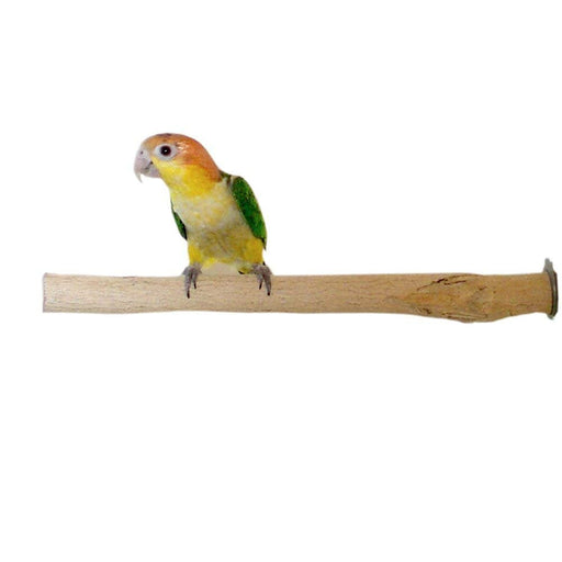 Birds LOVE Bottlebrush Wood Bird Cage Perch - Medium