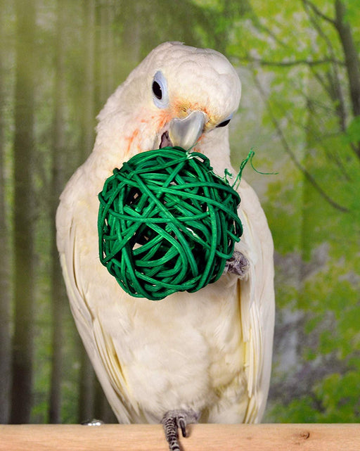 Birds LOVE 10 Pack 2-1/2 in Foraging Wicker Rattan Toy Colorful Chewing Balls Birds Vine Ball Cage for Parrots Hamster Bunny Rabbits Guinea Pigs Cats - Medium