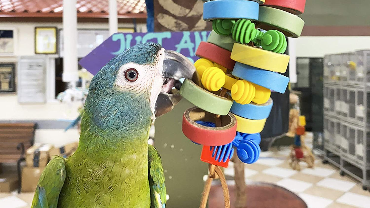 Birds LOVE Hanging Bagels and Plastic Flowers Bird Toy for Medium Birds Cages or Playgym